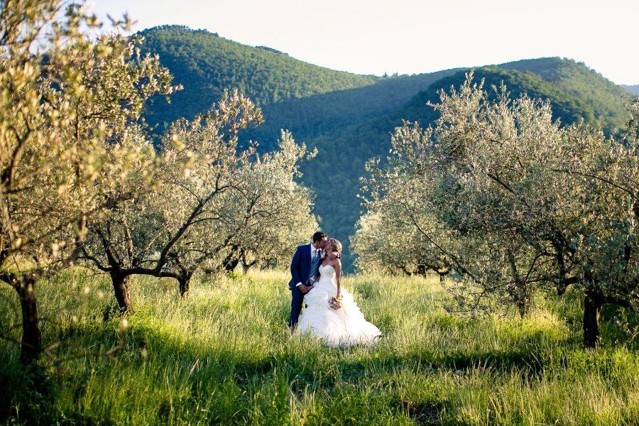 Hochzeitsfotoshooting in einem toskanischen Olivenhain